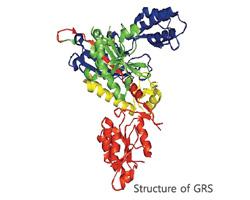 Pharma-03-GRS