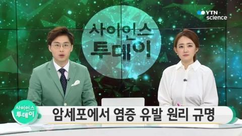 [YTN] 김성훈 교수팀, 암세포 염증 유발 원리 규명