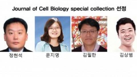 Biocon 김상범 박사 논문, JCB special collection에 선정